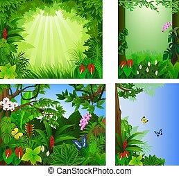 tropicale, grande, vettore, foresta, set, cornice, bello, illustrazione, icona