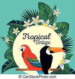 tucano, fiori, animali, pappagallo, etichetta