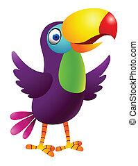 tucano, uccello, cartone animato