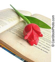 tulipano, libro