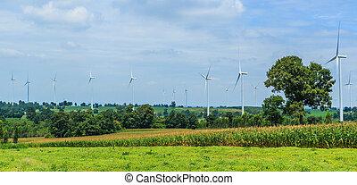 turbina, protezione, -, vento, natura