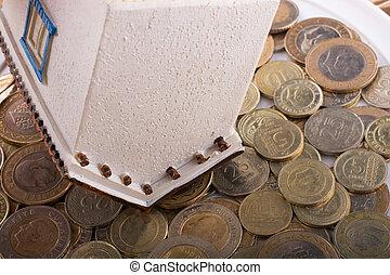 turco, casa, lato, lira, monete, modello