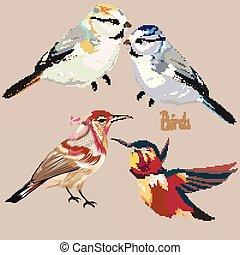 uccelli, set, vettore, mano, disegnato