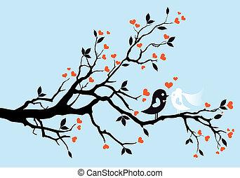 uccelli, vettore, matrimonio