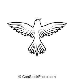uccello, schizzo
