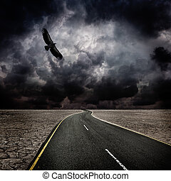 uccello, tempesta, deserto, strada