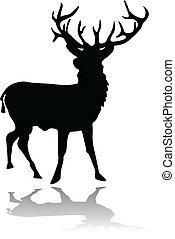 uggia, silhouette, cervo