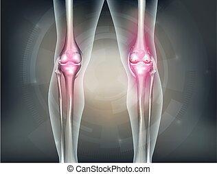 umano, gambe