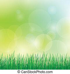 ummer, sfondo verde, erba