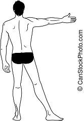 uomo, nudo, standing