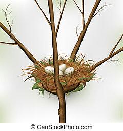 uovo nido