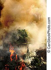 urente, plastica, causare, piante, inquinamento atmosferico