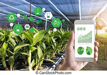 usando, agronomist, uomo, tavoletta, internet, cose, relazione, agricoltura, concetto, tecnologia