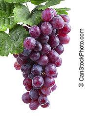 uva, isolato, vino rosso