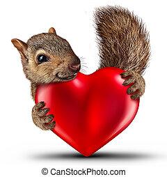 valentina, scoiattolo, carino