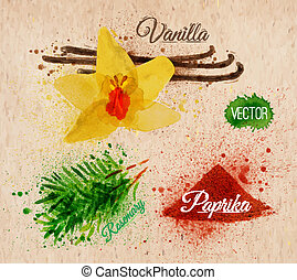 vaniglia, paprica, acquarello, erbe, spezie, rosmarino, kraft