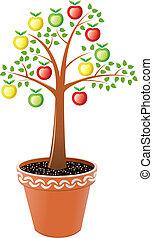 vaso, albero, mela
