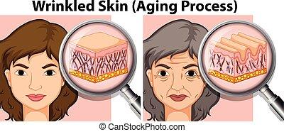 vecchia signora, giovane, pelle