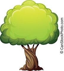 vecchio, gigante, albero
