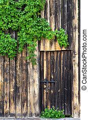 vecchio, legno, serratura, foglie, parete metallo, vite, porta, verde, vendemmia, selvatico