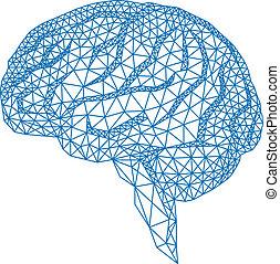 vecto, cervello, modello geometrico