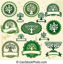 vendemmia, etichette, set, albero