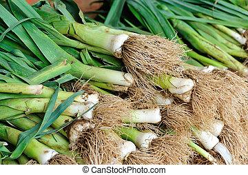 vendita, aglio, fresco, cavoletti di bruxel, mercato locale