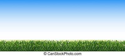 verde blu, erba, bordo, cielo