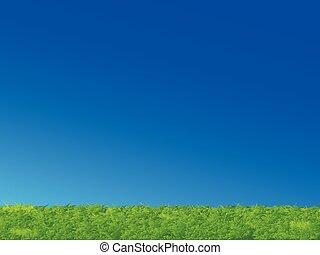 verde blu, erba, cielo, paesaggio