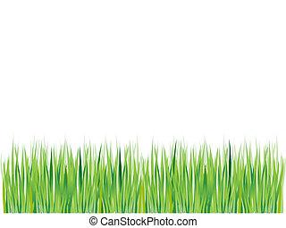 verde, erba, silhouette, fondo, estate