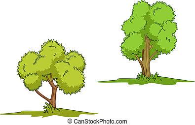 verde, isolato, albero
