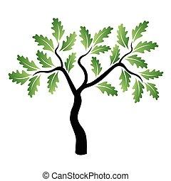 verde, vettore, quercia, giovane, albero