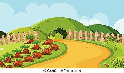 verdura, disegno panorama, giardino, fondo