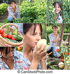verdura, donna, giardino, mosaico
