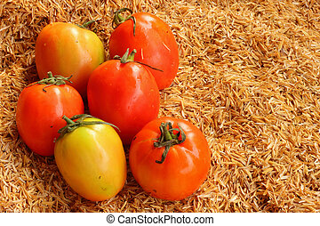 verdura, fresco, -tomato