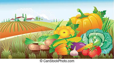 verdura, gruppo, paesaggio