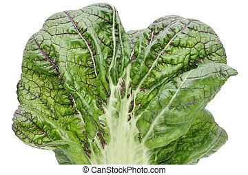 verdura, verde, primo piano, foglia, struttura