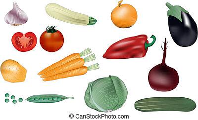 verdura, vettore, illustrazione