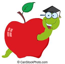 verme, felice, laureato, mela
