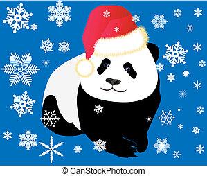 vestito, berretto, panda, rosso