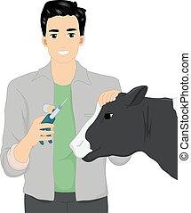 veterinario, mucca, illustrazione, vaccino, uomo