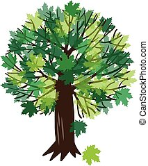 vettore, albero, acero, illustrazione
