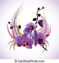 vettore, cartolina auguri, orchidee
