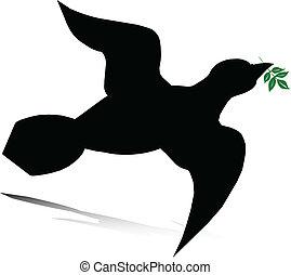 vettore, colomba, illustrazione