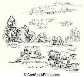 vettore, cows2, disegno, mano