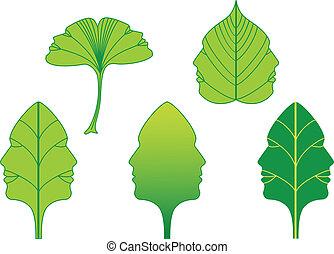 vettore, facce, foglie, set, verde