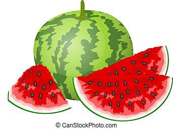 vettore, fetta, illustrazione, watermelon.