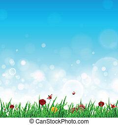 vettore, fiori, erba, paesaggio
