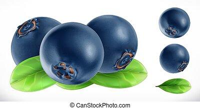 vettore, frutta, realistico, fresco, blueberry., icona, 3d