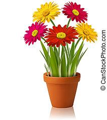 vettore, primavera, fiori freschi, colorare